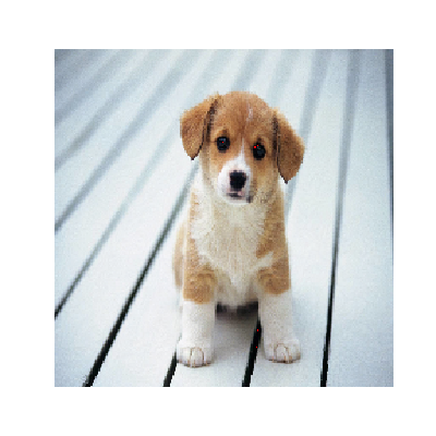 Trickdog